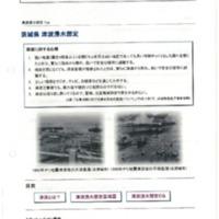 茨城県津波浸水想定.pdf